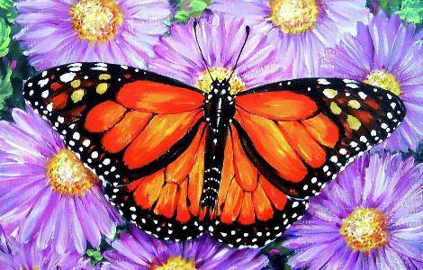 come disegnare una farfalla passo dopo passo con una matita