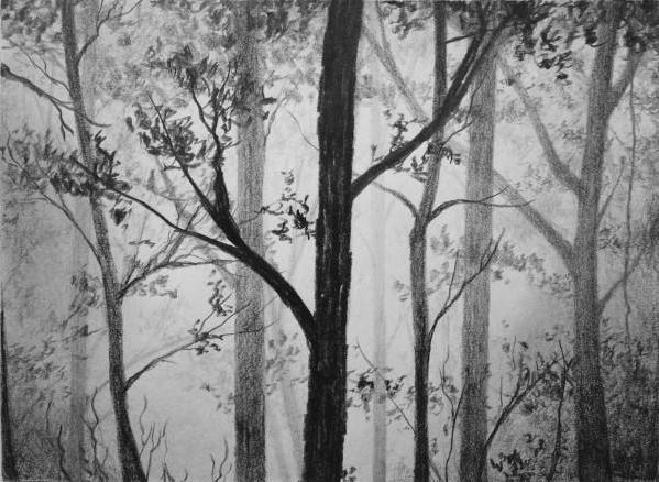 как да нарисувате гора на етапи