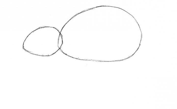 kako crtati miša olovkom korak po korak