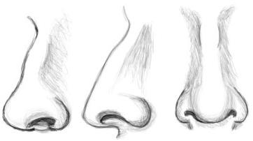 come disegnare un naso