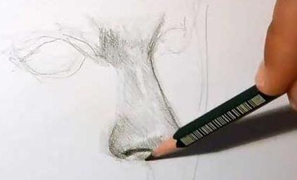 come imparare a disegnare ritratti a matita