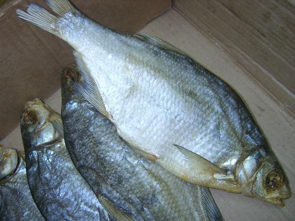 как да изсъхне рибата