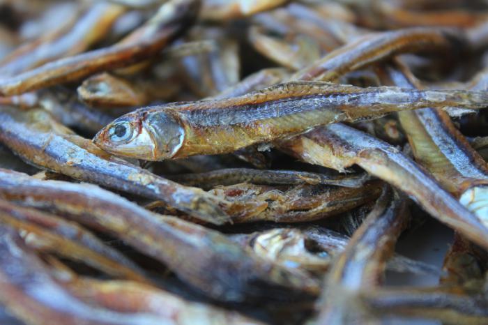 сушена риба