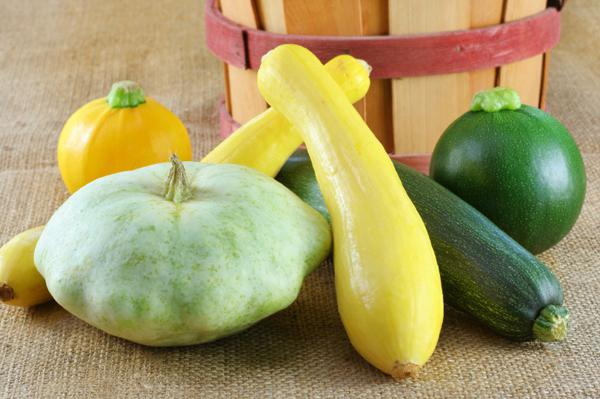 Ricette surgelate di zucchine