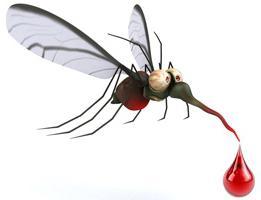 мумкуито фумигатор