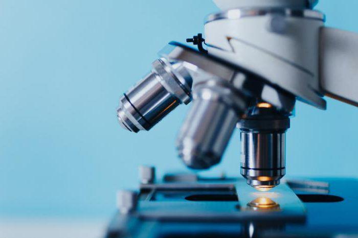 kateri hormoni so testirani za moške