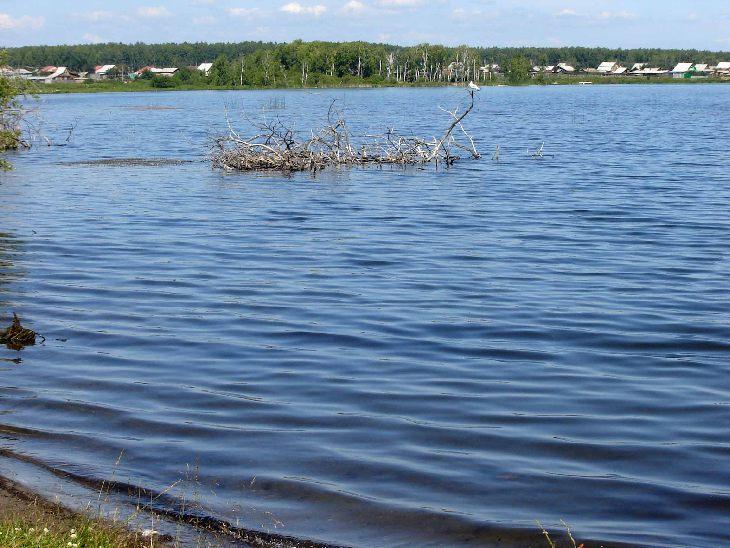 Lago nella zona di Kunashevsky