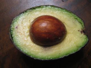 Come far crescere un alberello di avocado a partire dal ...