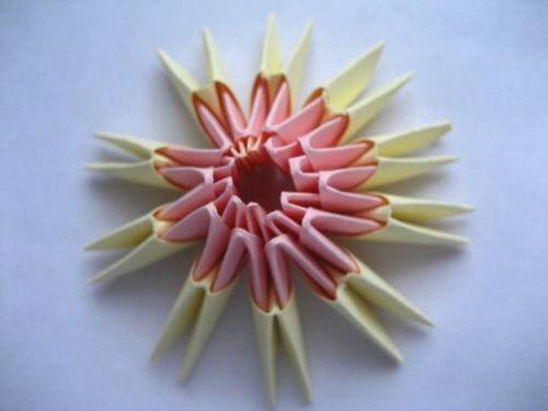 moduli per schema origami