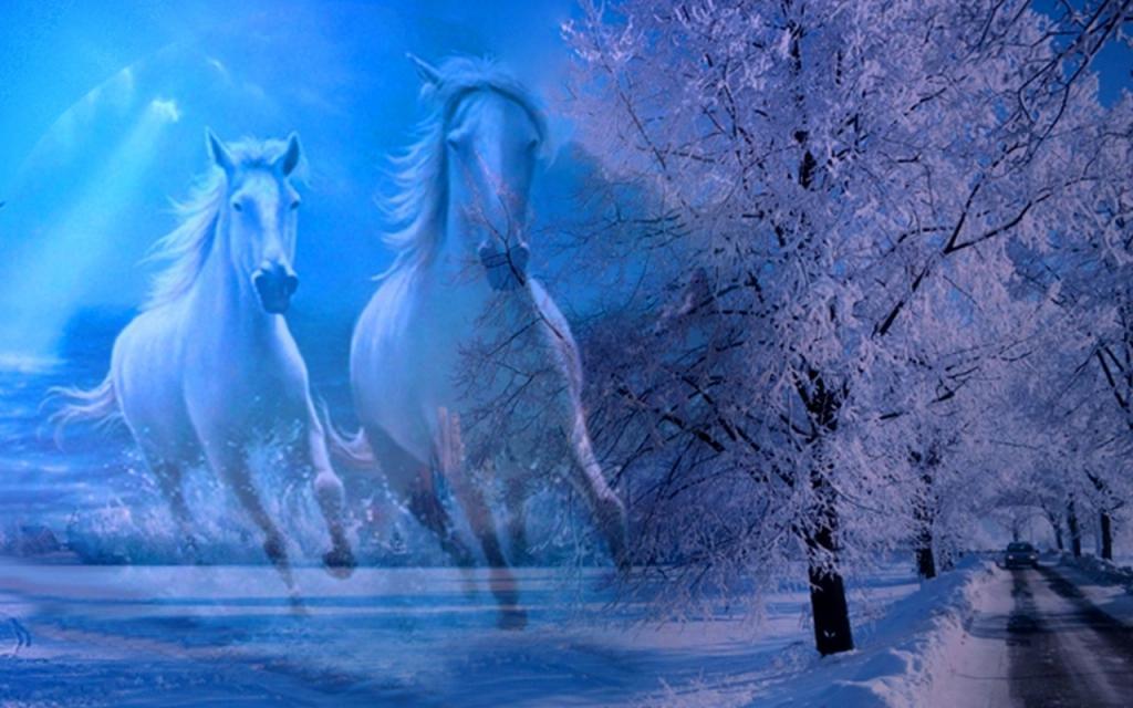 Tre cavalli bianchi