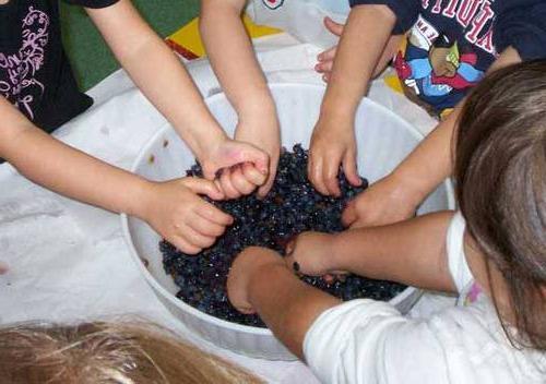 Изабела домашно вино грозде