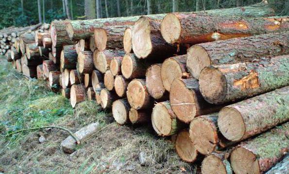 Цена дрвене летве