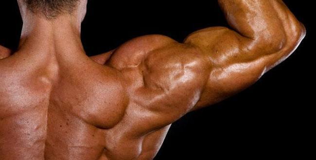 како брзо пумирати рамена