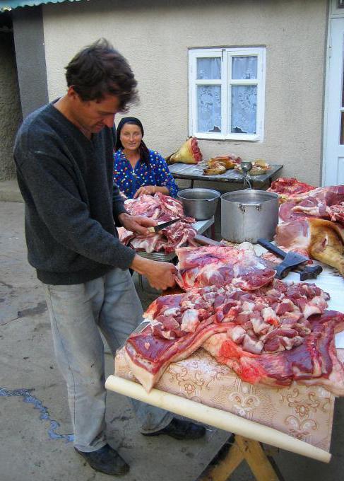 come pugnalare un maiale nel cuore