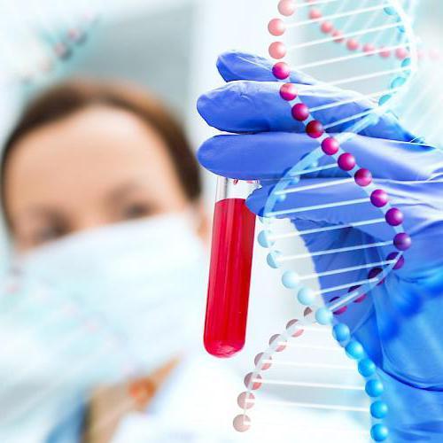 kako preizkusiti progesteron in estrogen