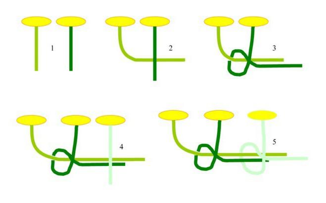 Come tessere uno schema di ghirlande