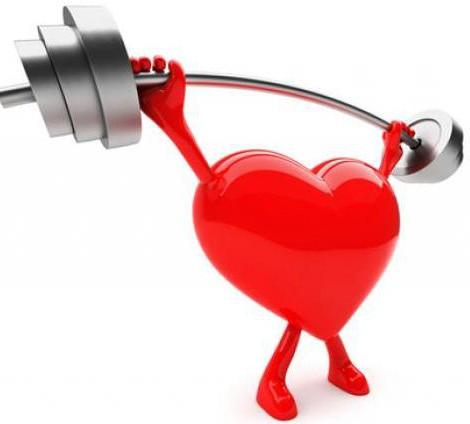 come rafforzare il muscolo cardiaco