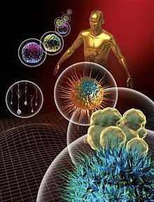 Človeška imuniteta
