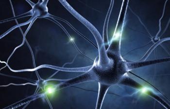 lidských nervových buněk