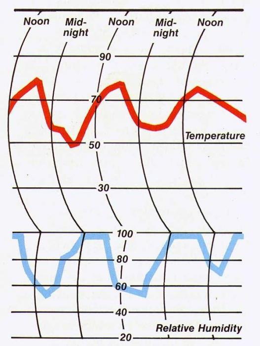 normale umidità dell'aria