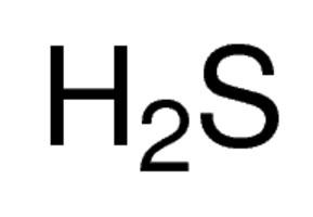 in caso di intossicazione da idrogeno solforato è necessario