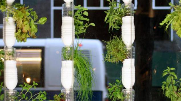 fertilizzante per coltura idroponica