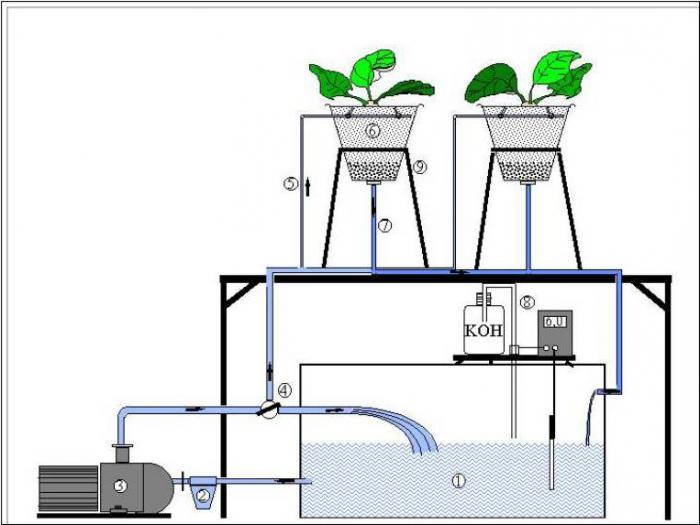 installazione idroponica fatta in casa