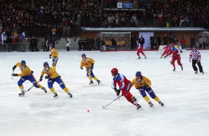 pravidla hokeje