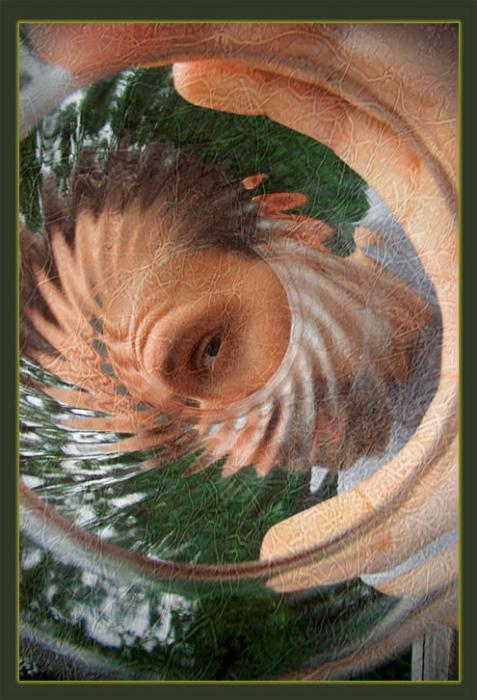 vnímání v psychologii