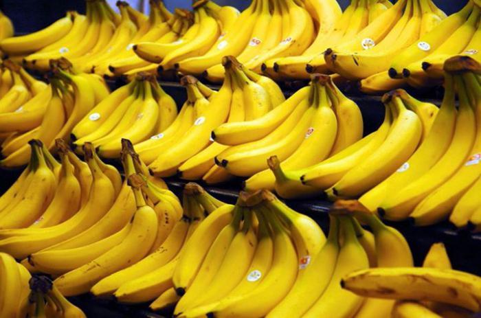 kako raste banana