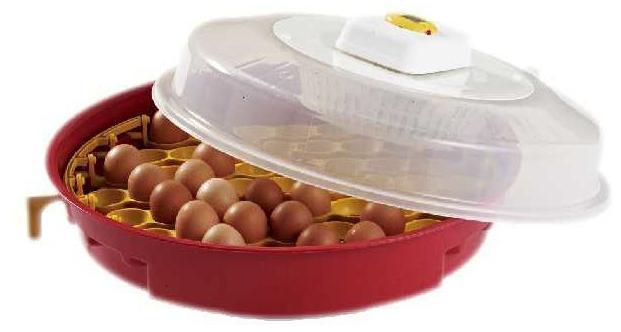 incubatori di uova di gallina