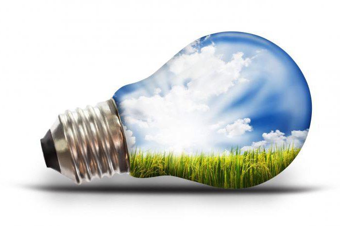 иновации, специалност, които работят рецензии