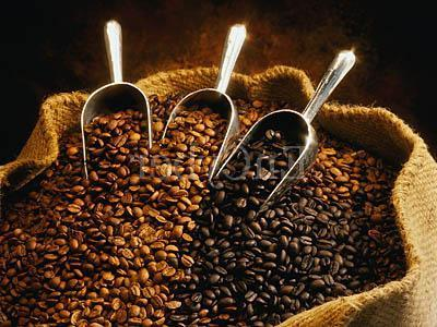 Која инстант кафа је боља