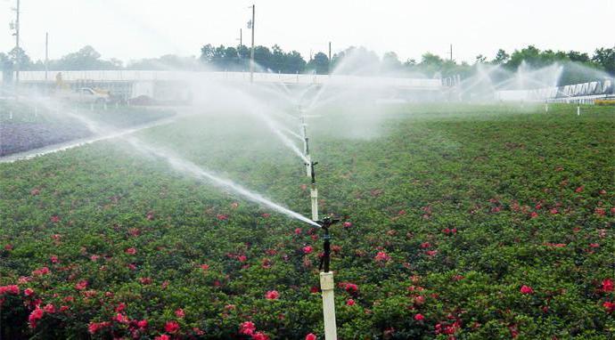 significato della parola irrigazione