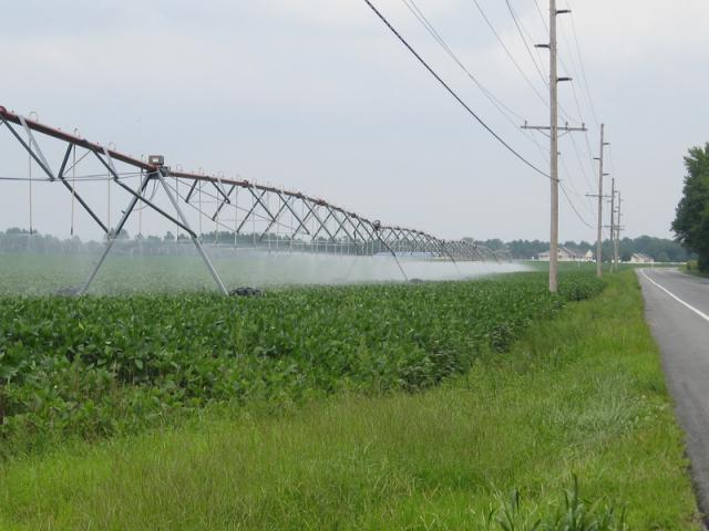 irrigazione dell'acqua