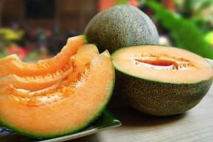 lubenica je bobica ili voćni odgovor