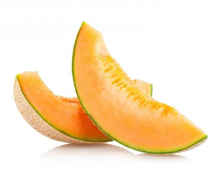 što je dinja voće povrće ili bobica