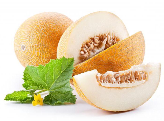 dinja je bobica ili voće