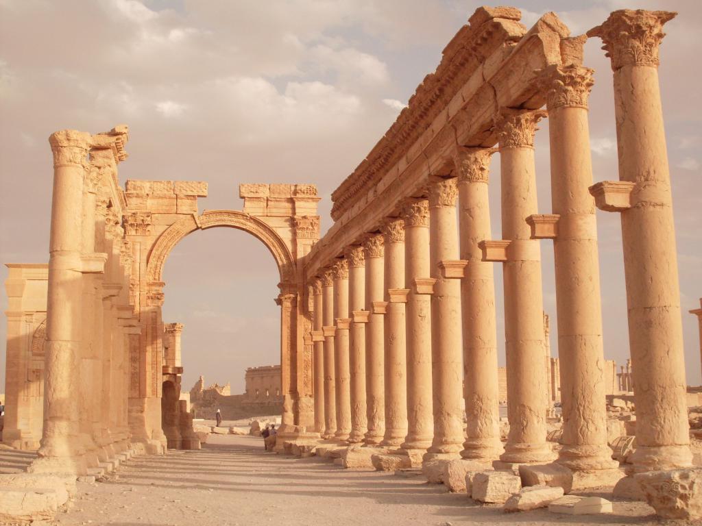 Palmyra siriano
