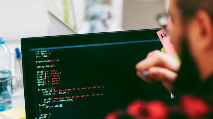 opis dela vodja programer inženir