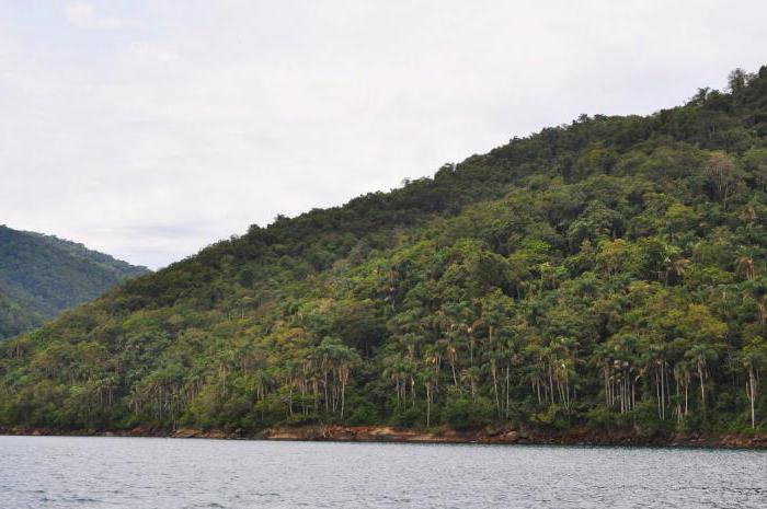 Keymada Grandi otok strupenih kač