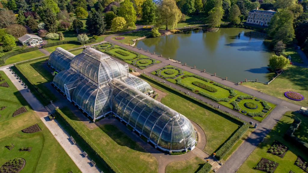 Palmový dům v zahradách Kew