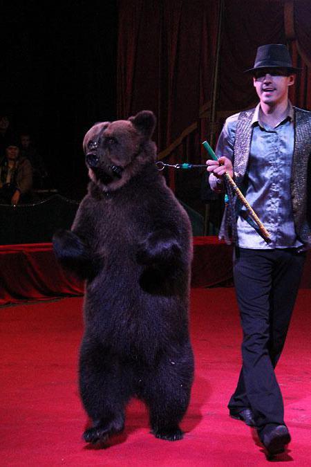 Национален цирк в Киев