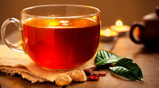 Ivan Tea Plant