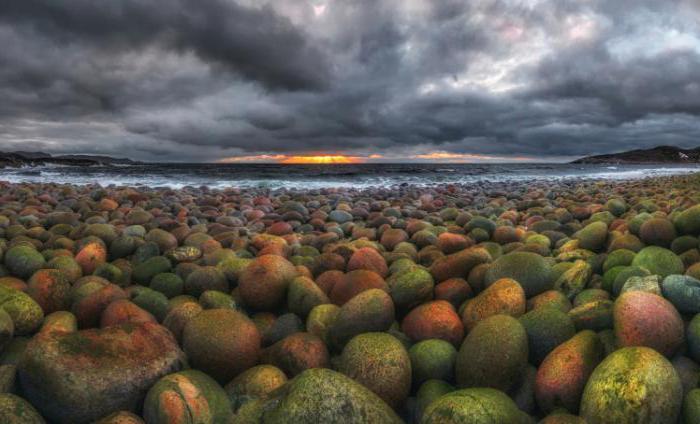 Северна обала полуотока Кола