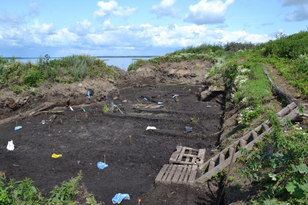 Izkopavanja v vasi Vezhi