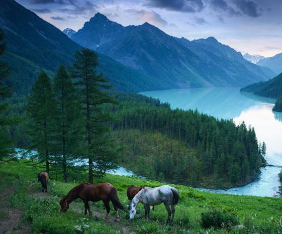 Kucherly Lake