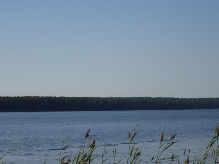 Lago Lipov