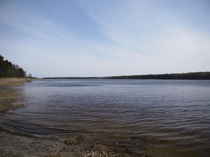 Lipovskoe jezero odpočinku