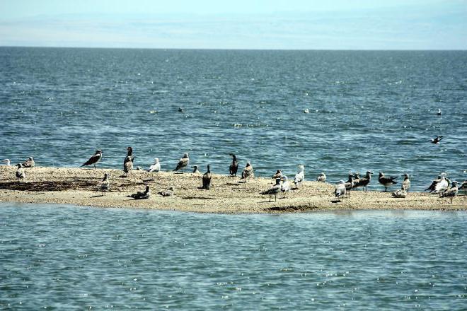 Foto del lago Zaisan